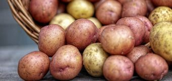 lots of potatoes