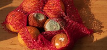 bag of rotten tangerines