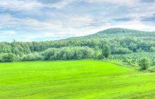 A green mountain to climb